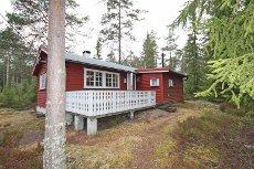 Usjenert hytte i skogen - nærhet til Høljøren med fine turmuligheter hele året