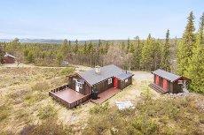 Ringebufjellet - Hytte med solrik og fin beliggenhet nær Måsåplassen!