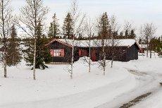 BJØDNALIE - GOLSFJELLET - Trivelig hytte nær skiløpyper og skiheis