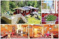 Koselig hytte i skogsterreng i nærheten av Øyeren!
