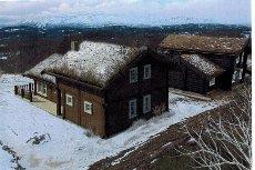 Rauland - Listaullia - Prosjektert hytte med fantastisk utsikt mot Raulandsfjell - ski in/ski out
