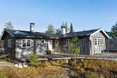 Sjuvasslia - Blefjell - Innbydende hytte nær Bleheisen med vei, vann og avløp