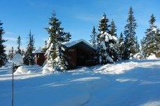 Lauvlia/Ljøsheim - Koselig hytte med 2 sov. nær skiløype
