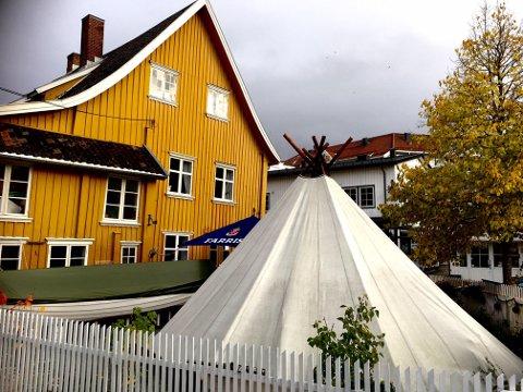 Verneforeningen Gamle Drøbak er lite tilfreds med det estetiske uttrykket som dagens aktivitet i hagen til handelshuset representerer.