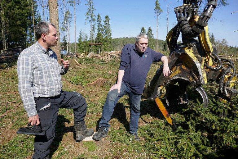 VIKEN SKOG: Skogbrugsleder Jon Martin Bergum ogproduksjonsplanlegger Thore Stenrød på jobb i Aremark.