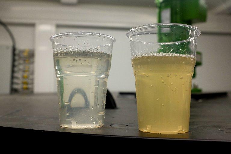 Glasset til høyre viser hvordan vannet ser ut på vei inn i renseanlegget. Glasset til venstre inneholder ferdigrenset vann.