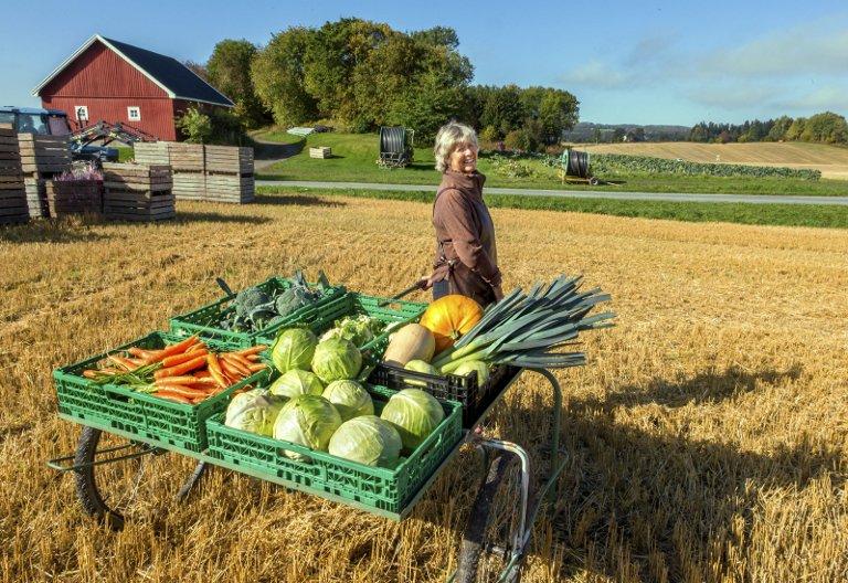 BUGNER: Toten er grønnsaker og grønnsaker er Toten. Inger Fremstad på Sogstad gårdsutsalg er en av Totens fremste matambassadører. Foto: Asbjørn Risbakken