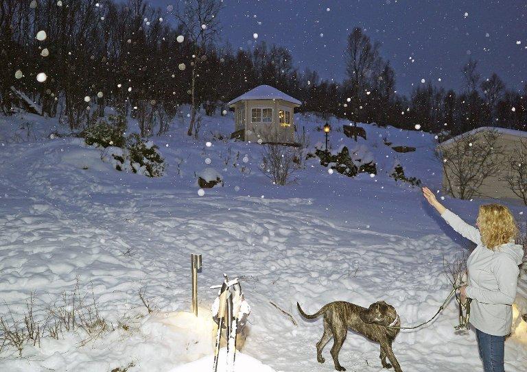 STAKK AV: Oppover mot Ankenesfjellet, like bak huset til eieren Guri Aspemo, la hunden «Bailey» på sprang. Bare minutter før det sto 2018. Nå takker eieren for all hjelp til å finne henne.