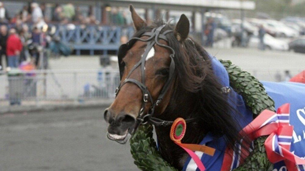 Bergen 14.10.06 (vant Skjold-løpet)