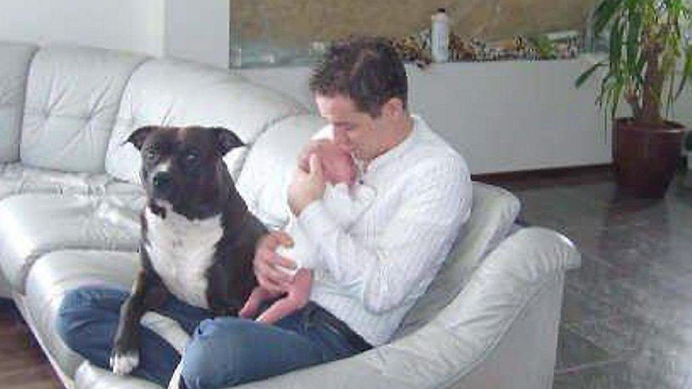 KAMPEN FORTSETTER: Majlos skjebne er ennå ikke avgjort, hundefolket organiserer seg på Facebook for å støtte Majlo og familien.