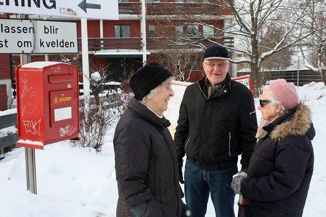 Teddy Hoftvedt, Grethe Larsen og Arvid Solem konstaterer at det ikke er mulig å nå frem til postkassen på grunn av snø. Foto: Ivar Brynildsen