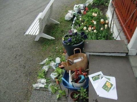 På plantebyttemøtet i mai var det mange planter som skiftet eier og fikk nye hager å vokse opp i.