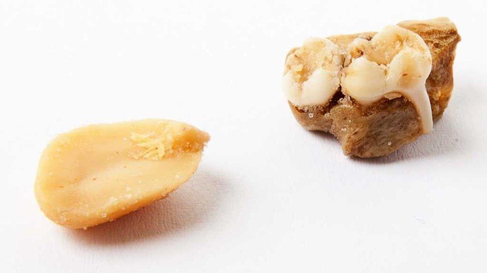 Her er biten avfotografert ved siden av en peanøttene i posen.