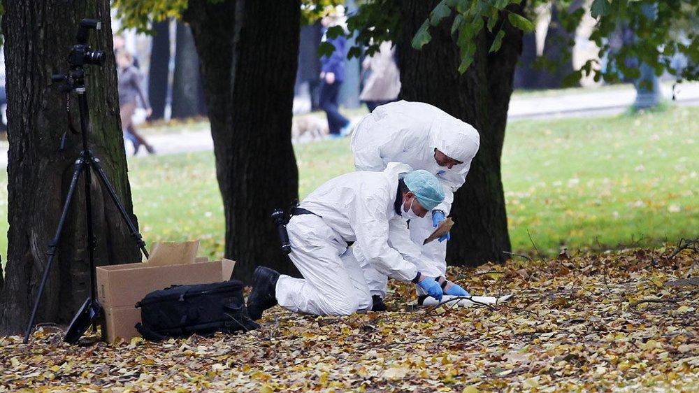 SLOTTSPARKEN: Forrige helg ble en kvinne voldtatt her, 50-100 meter inn i Slottsparken, i nærheten av Henrik Ibsens gate.