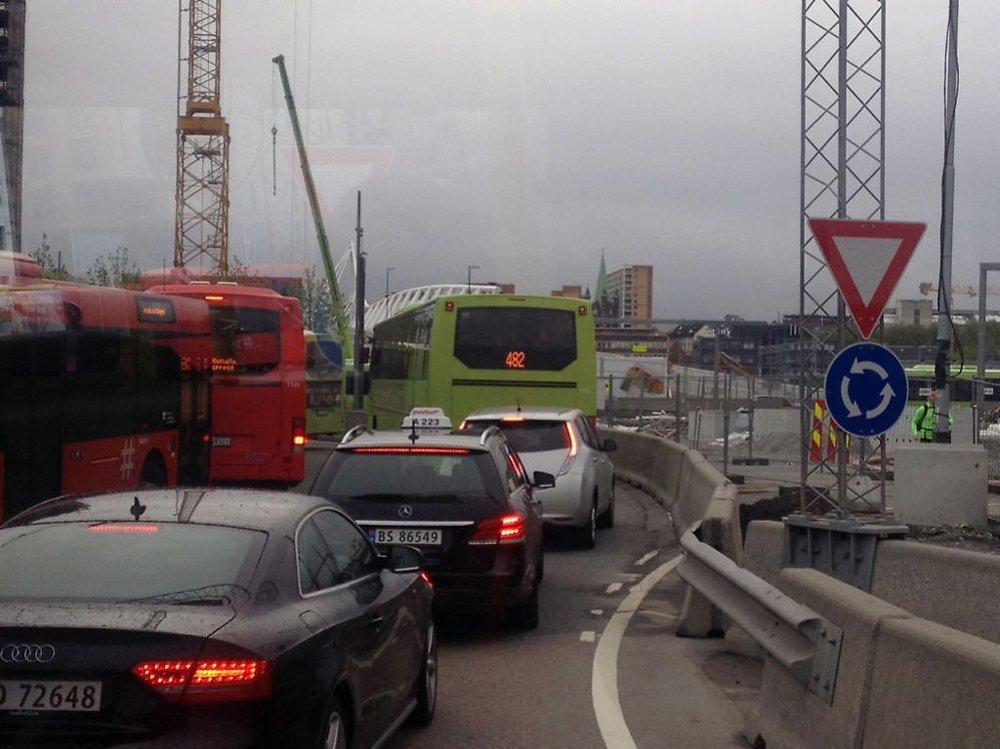 VEIOMLEGGING: Køer ved Bjørvika i Oslo mandag morgen.