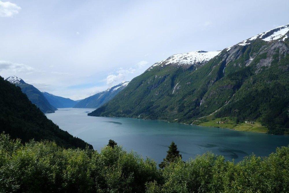 KLIMASKOG: Miljødirektoratet har startet pilotprosjekt der granskog skal erstatte løvskog og åpne landskap. Målet er å binde karbon, og på den måten veie opp for Co2-utslipp. Dette bilde er fra Fjærlandsfjorden i Sogn og Fjordane.