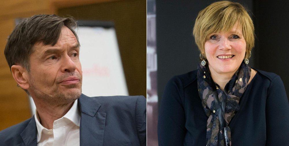 Kjetil Rolness legger ingenting imellom i sitt krav til administrerende direktør i SSB, Christine Meyer.