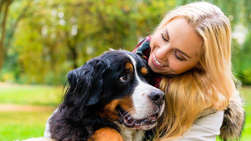 HELSEFREMMENDE: Ny svensk undersøkelse viser at hundeeiere har mindre risiko for å dø av hjerte- og karsykdommer.