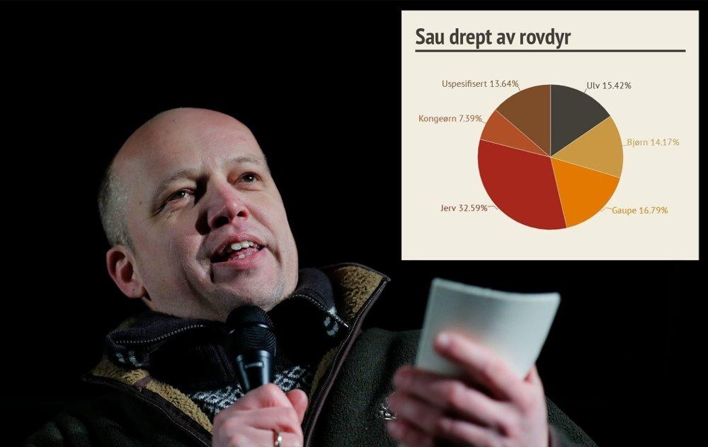 Sp-leder Trygve Slagsvold Vedum holdt appell da ulvemotstandere marsjerte i Oslos gater denne uken. Diagrammet viser hvor stor andel de enkelte rovdyr står for av det totale antallet sau som blir tatt.