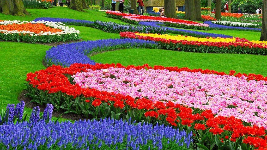 EN BLOMSTERDRØM: Keukenhof er en av Nederlands største turistattraksjoner.