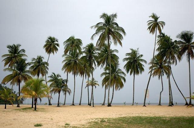 Mye av handlingen i filmen foregår på eksotiske Trinidad.