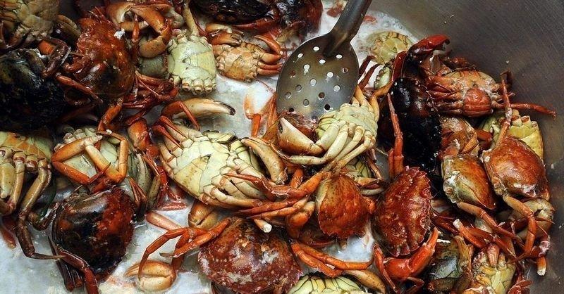 NYDELIG: Strandkrabber er et perfekt utgangspunkt for en herlig krabbesuppe.