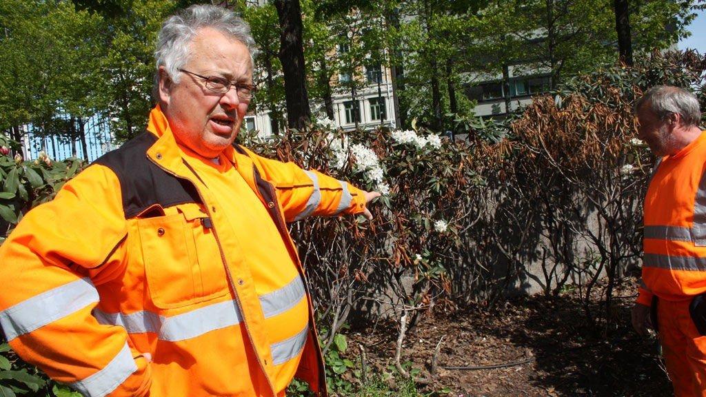 MÅ RYDDE: Finn Martinsen, til venstre, viser hvor han og kollega Finn Christiansen daglig må rydde opp avføring. Dette er i den på den store plassen rett nedenfor Radisson Hotel ved Oslo bussterminal.