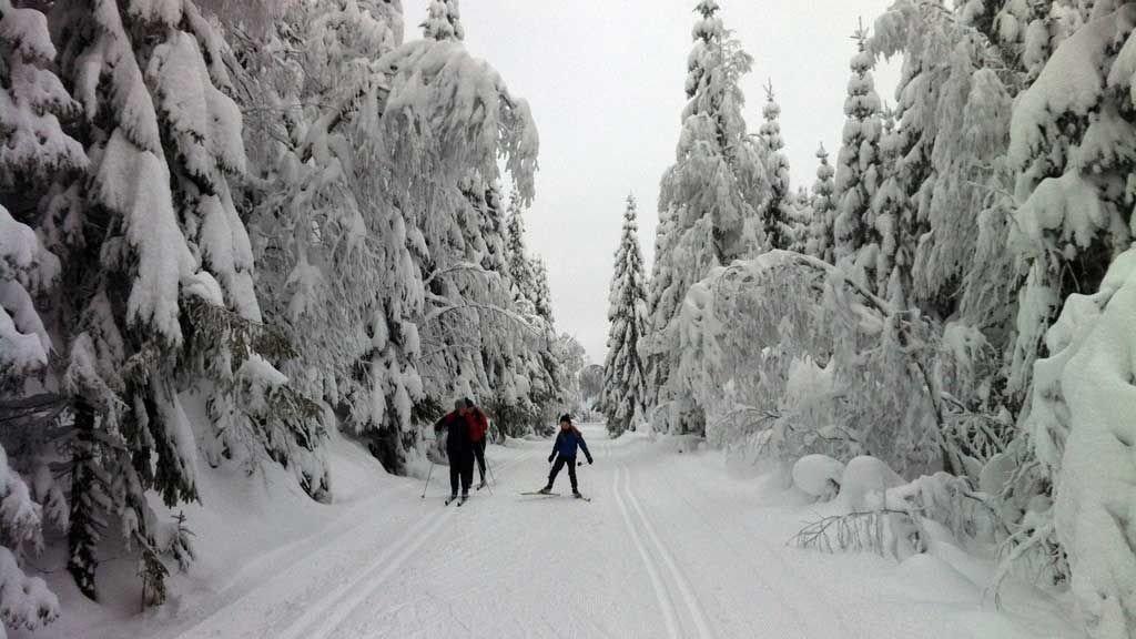 FØRET I FARE: Mildvær og regn truer skiføret på Romerike de kommende dagene, og spesielt til helgen. Men foreløpig er det fine forhold, som her på Nordåsen ovenfor Maura i Nannestad 1. juledag.