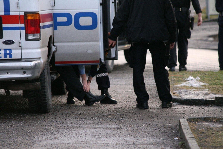 Her kan du se hva politiet i Oslo har rykket ut på denne uken.