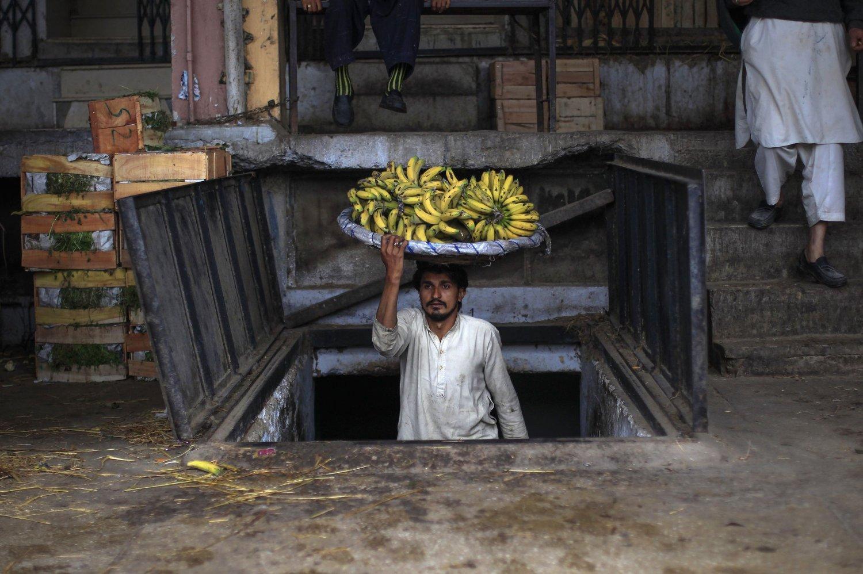 En mann bærer bananer inn på et matmarked i Islamabad i Pakistan. Sykdom truer nå store deler av verdens bananavlinger.
