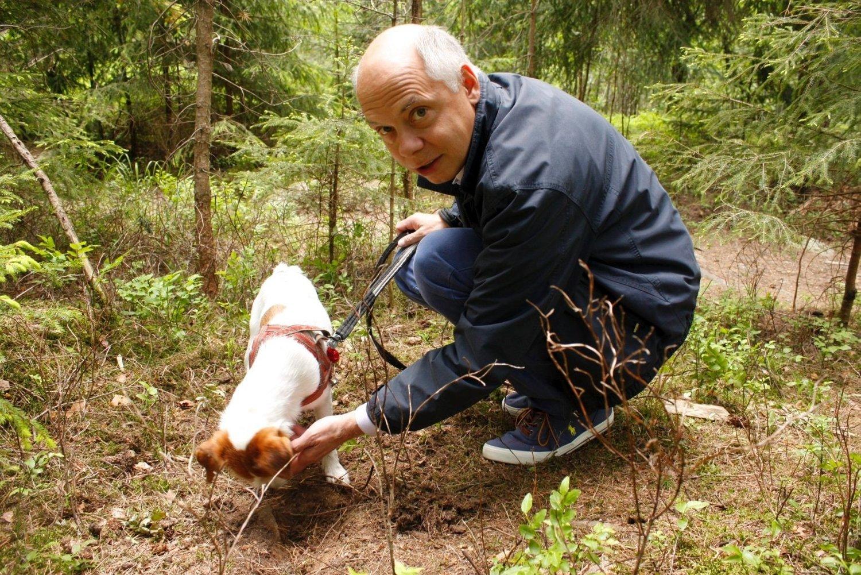GOD SNUTE: Stratos og Frank Haugen tilbake der Stratos fant trøfler, i skogen ved Pynten borettslag på Bergkrystallen. Foto: Kristin Trosvik
