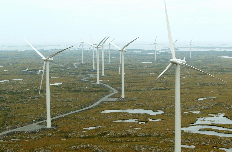 For mange for fort. Naturvernerne er kritiske til omfanget og tempoet i den planlagte vindkraftutbyggingen i Norge. På bildet ser vi vindmølleparken på Smøla i Møre og Romsdal. Foto: Bjørn Sigurdsøn / NTB scanpix