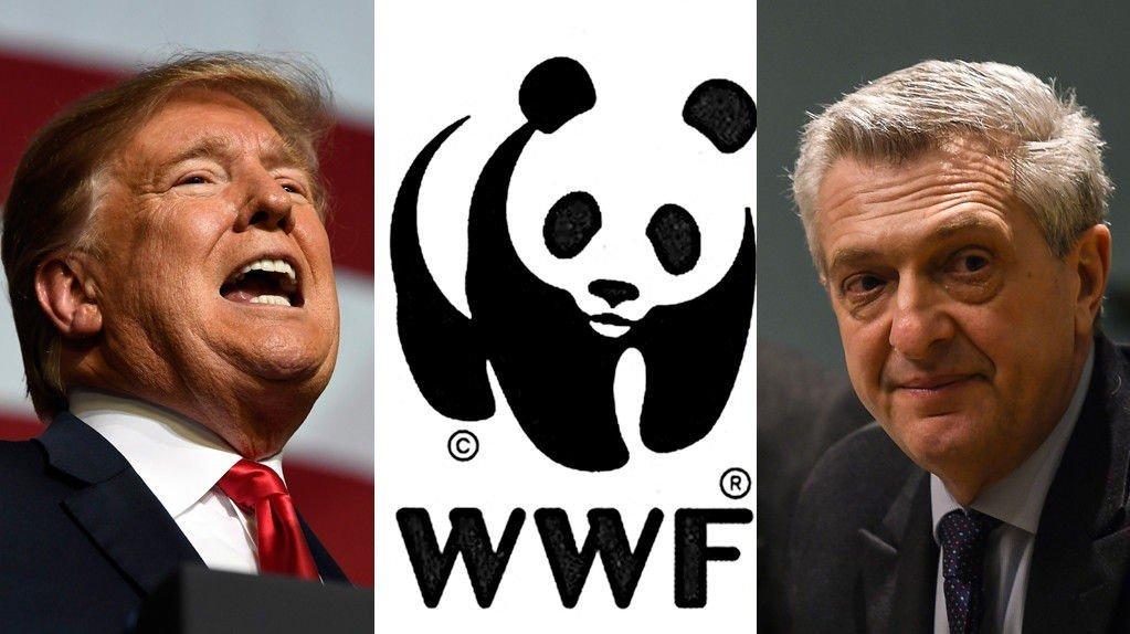 USAs president Donald Trump, Verdens naturfond (WWF) og FNs høykommissær for flyktninger Filippo Grandi er blant kandidatene som er nominert til Nobels fredspris for 2019.