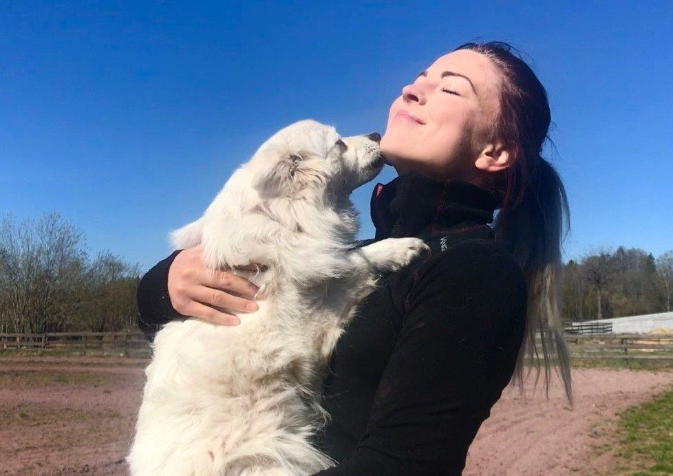 Om hunden din vil slikke deg i ansiktet kan det bety at den ser opp til deg fordi den ser på deg som flokkens leder.