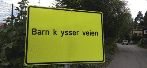SØTT: Ingen barn nusset på veien med det kyske navnet Jomfrustien da lokalavisen kom forbi, men skiltet har nok fått mange til å trekke på smilebåndet.