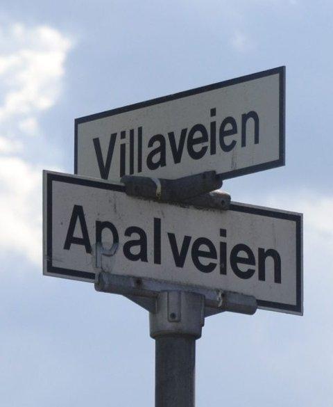 ANALVEIEN: Stygt navn i pent strøk. Heter egentlig Apalveien.