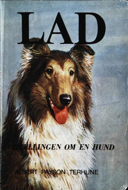 Lad fortellingen om en hund.jpg
