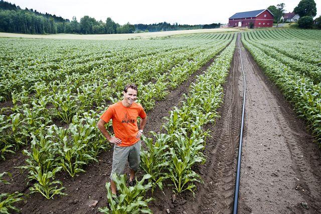 TIDLIG KLAR: tidlig klar: Allerede i juni var Ole Martin ferdig med å plante avlingen sin. FOTO: HÅKON JACOBSEN                         Kjøp bilde                   $('buypicture_main').addEvent('click', function() {            openBuyimagePopup('http://www.oblad.no/popup/1.5573842?view=buyimage&articleid=1.5573840');        return false;           });