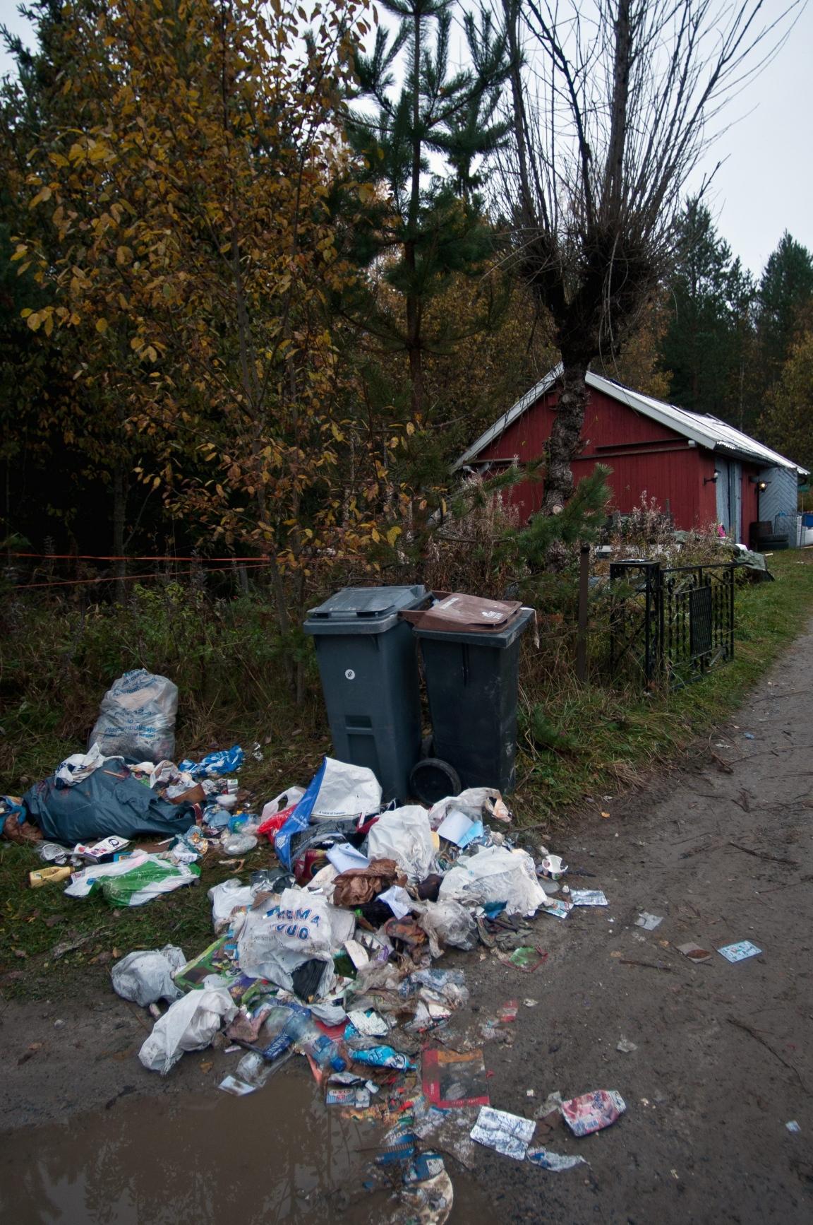 søppelbjørnen