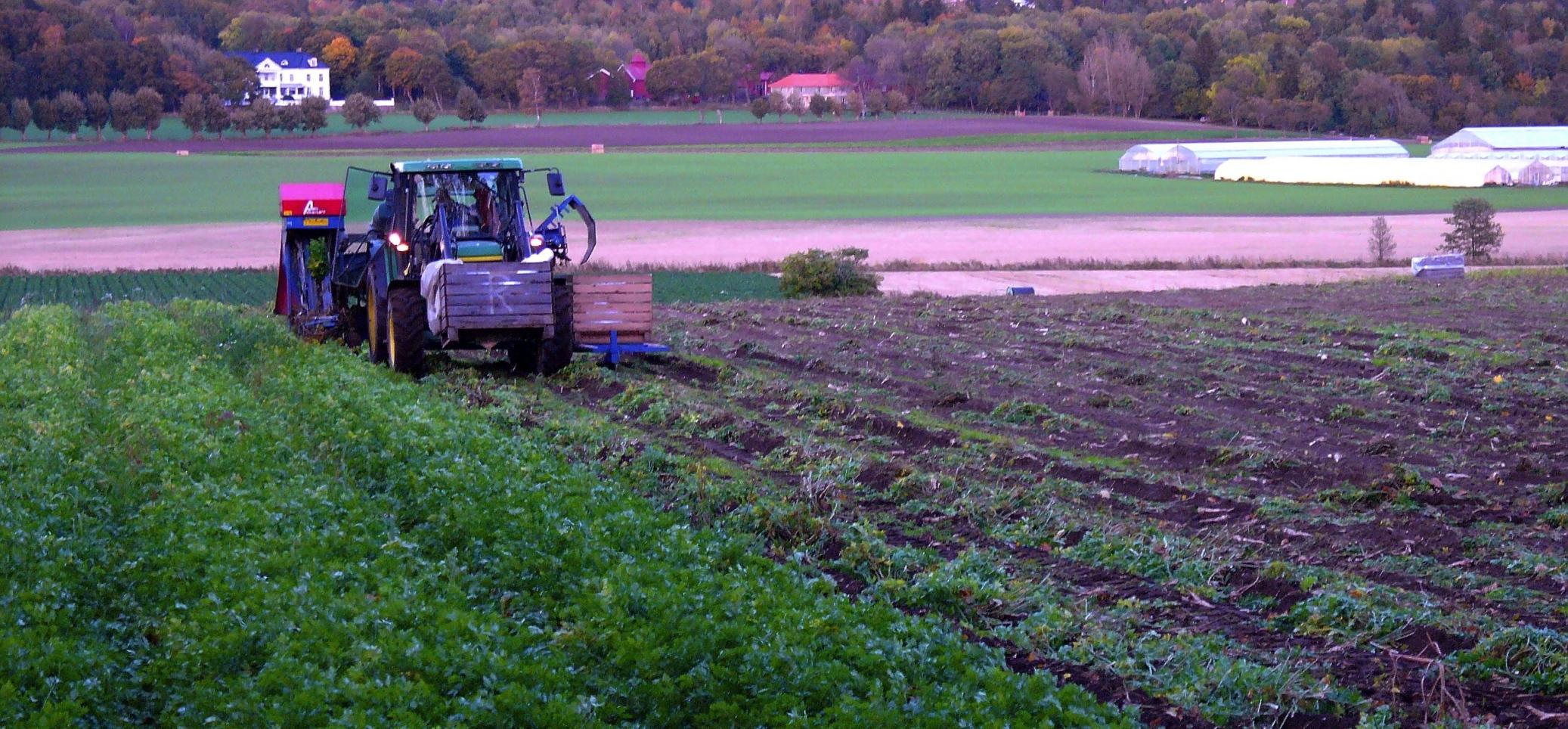 Traktor som kjører på et jorde