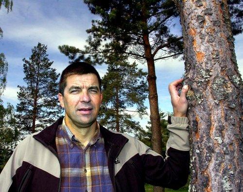 SPØRRENDE: Gunnar A Gundersen (H) lurer på hvorfor Kongsvinger skal belastes med mer rovdyr. Foto: S
