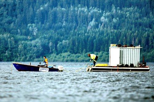 Politisøk etter savnede ved Utøya